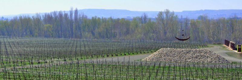 Vista de la antigua cantera convertida en el viñedo Lagravera, con sello de cultivo orgánico y biodinámico