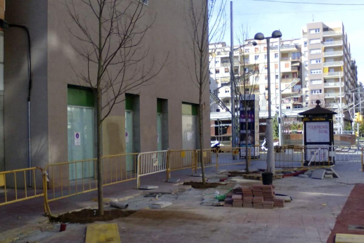 Replantación de árboles en la avenida balmes, lleida. Arnó